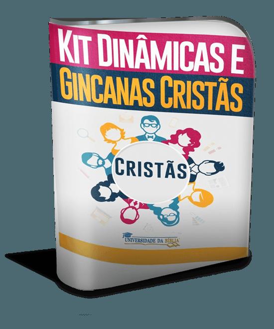 modernsoftwarebox_550x660 (8)kitdinamicasegincanas